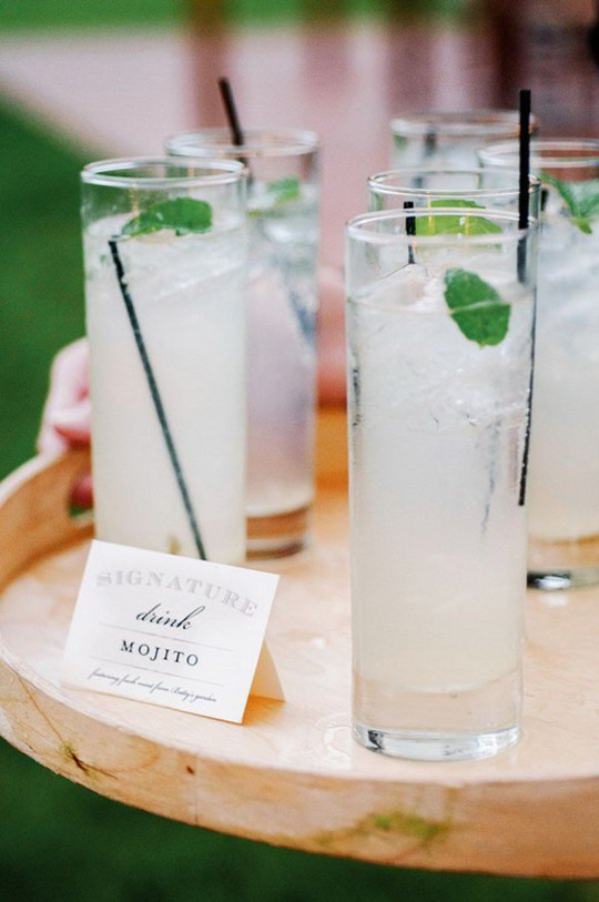 ice leaf cocktail for engagement party ideas