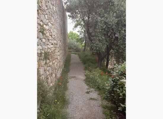 San-Gimignano-Tuscany-Glam-Italia-Tour-15