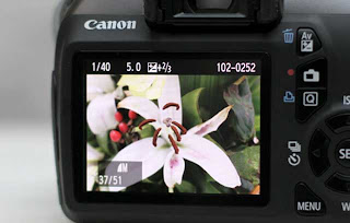 Review Canon EOS 1100D - Best DSLR camera with cheap price