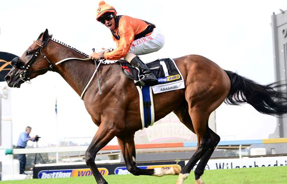 Abashiri Triple Crown Favourite SA Derby 2016