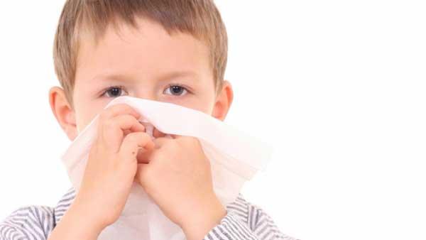 Flu Nandur93