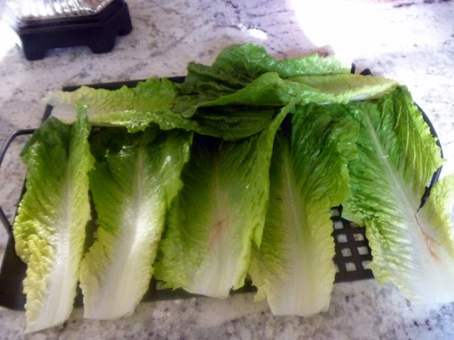 Grilled Romaine Salad - and excellent side dish come spring and summer.  Slice of Southern