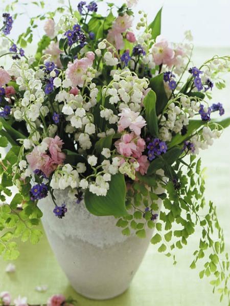 Tra orto e giardino fiori in vaso per una desiderata for Giardino fiori