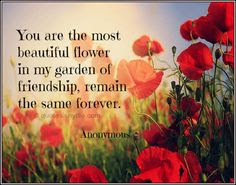 new-and-latest-friendship-quotes