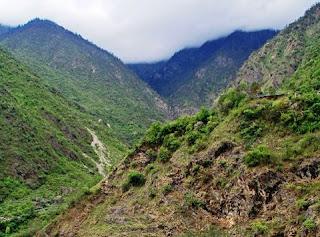 Chinese bergen