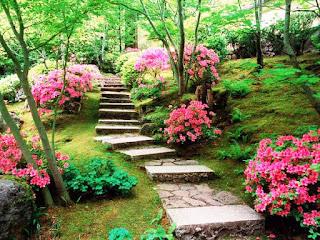 الحديقة اليابانية المذهلة أمريكا japanesegarden8.jpg