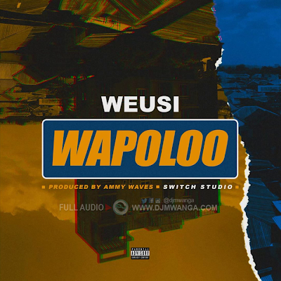 AUDIO: Weusi - Wapoloo (Wapolo) :Mp3 Download (NEW SONG)