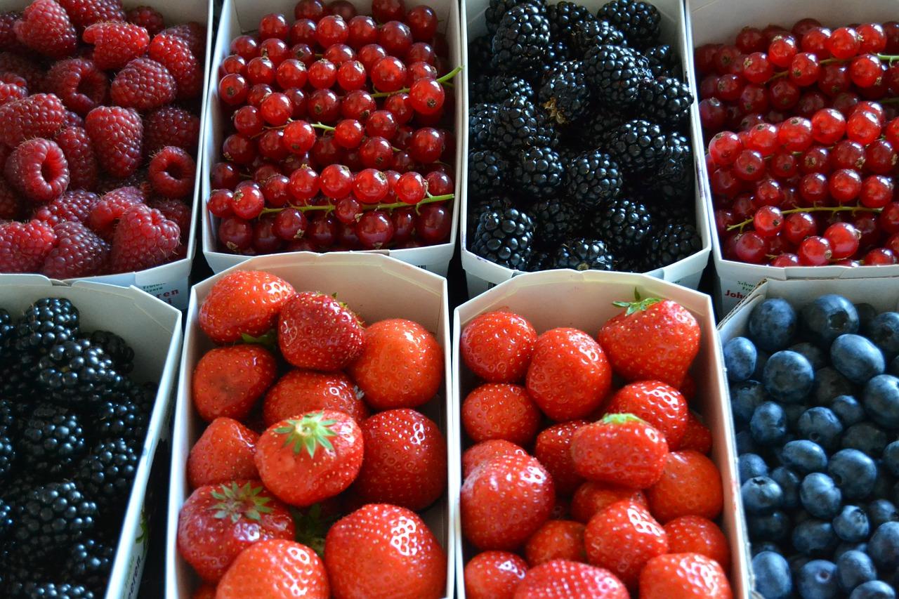 La meiga y su caldero muffins de frutos rojos y chocolate for Arbol de frutos rojos pequenos