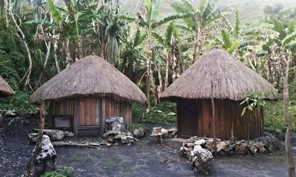 крыши из стеблей имперты