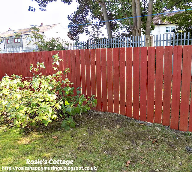 The Picture Perfect Project October New Fencing is Built In The Garden
