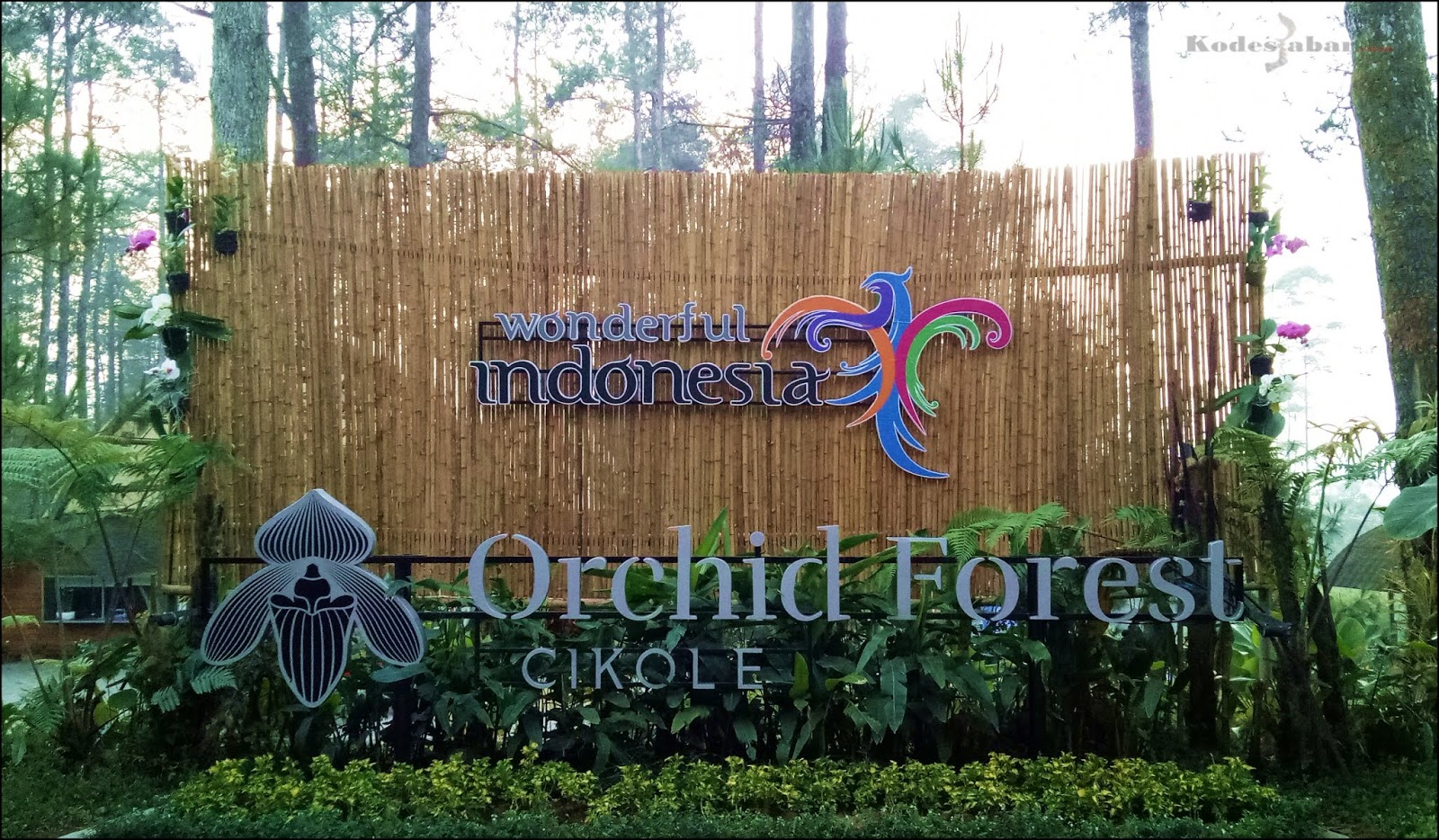 Orchid Forest Cikole, Destinasi Wisata Alam Paling Instagramable di Bandung