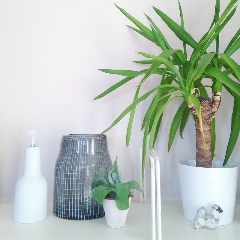 plants in bedroom makeover