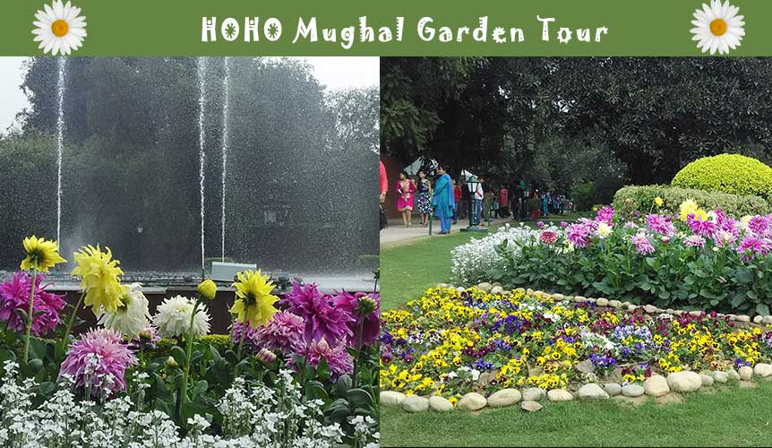 http://hohodelhi.com/mughal-garden/?utm_source=Mughal%20Garden%20Blog%20to%20HOHODelhi&utm_campaign=Mughal%20Garden%20Blog%20Post%20-%20CTA&utm_medium=Mughal%20Garden%20Blog%20Post%20-%20CTA&utm_term=Mughal%20Garden%20Blog%20Post%20-%20CTA&utm_content=Mughal%20Garden%20Blog%20Post%20-%20CTA
