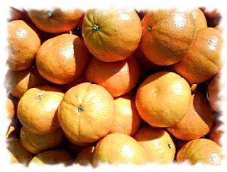 свойства плода мандарин