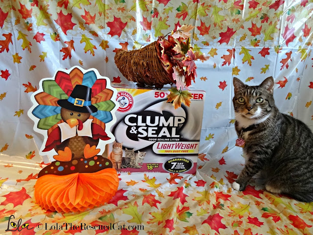 clump and seal litter|arm and hammer