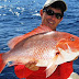 Red Snapper Benefits for Your Health