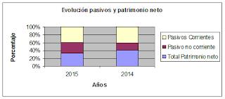 Evolución Pasivo y Patrimonio Neto.