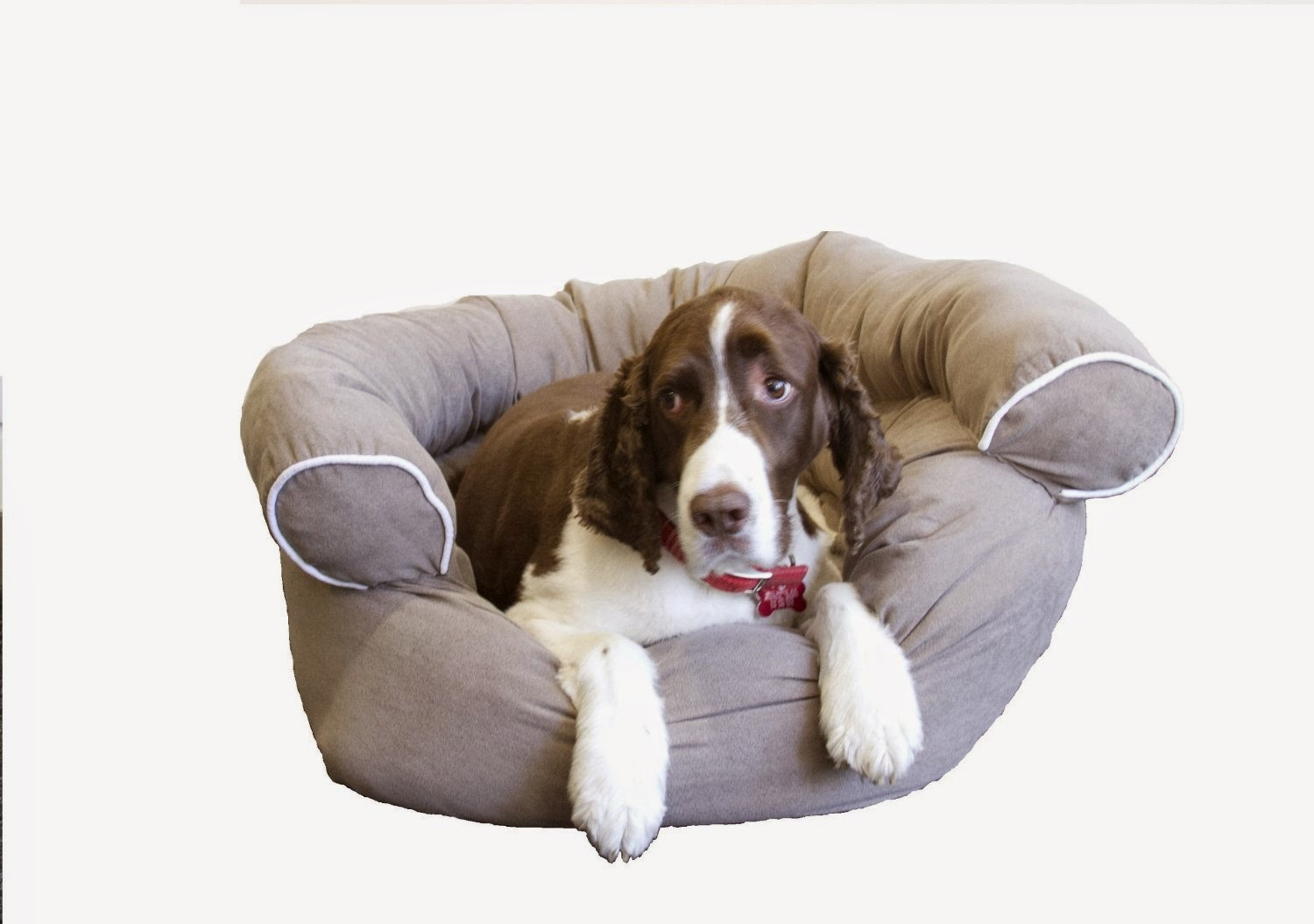 Comfy Couch Dog Bed