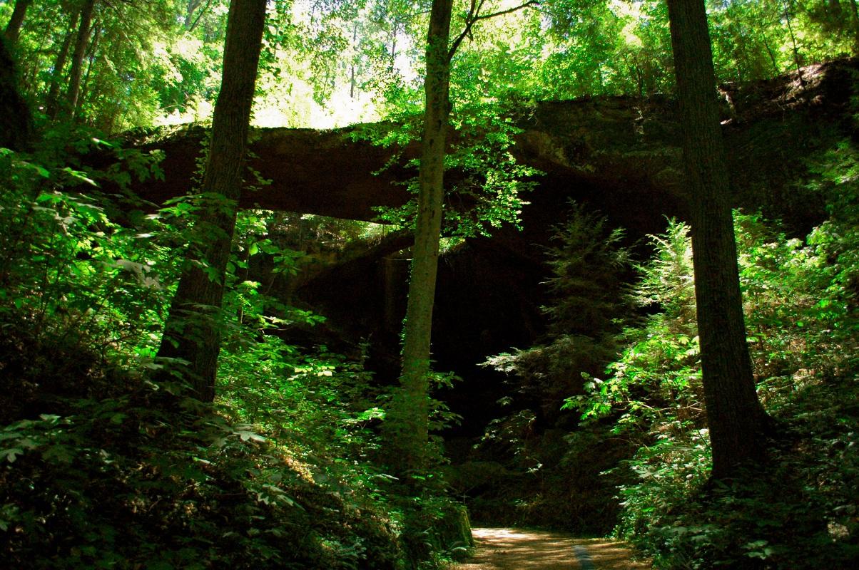 One State, Two Boys: Natural Bridge, Alabama