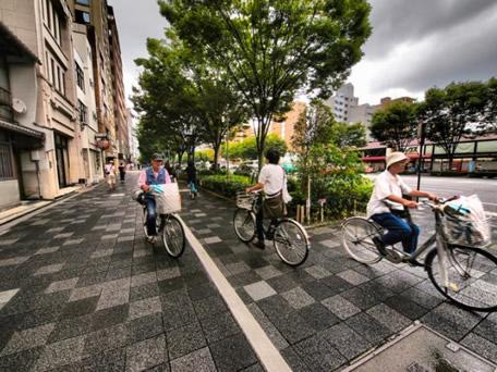 seguro para bicicletas será obrigatório