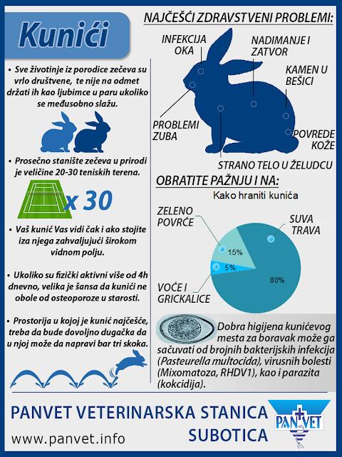 Kunić kao ljubimac infografika Panvet Subotica