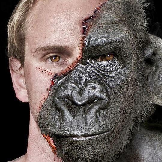 fotomontaje mitad humano mitad simio
