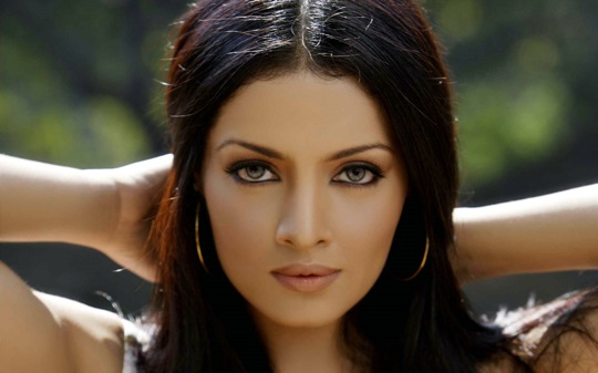 Twitter users alleged on Thursday that Bollywood actress Celina Jaitley was seeking to get some publicity in the horrifying terror attack at the Istanbul airport on Tuesday.   The ferocious Twitter response followed three tweets from Celina Jaitley, in which she mentioned that she had passed through the Istanbul airport a month ago, enroute to Miami, where she was honoured for her work.