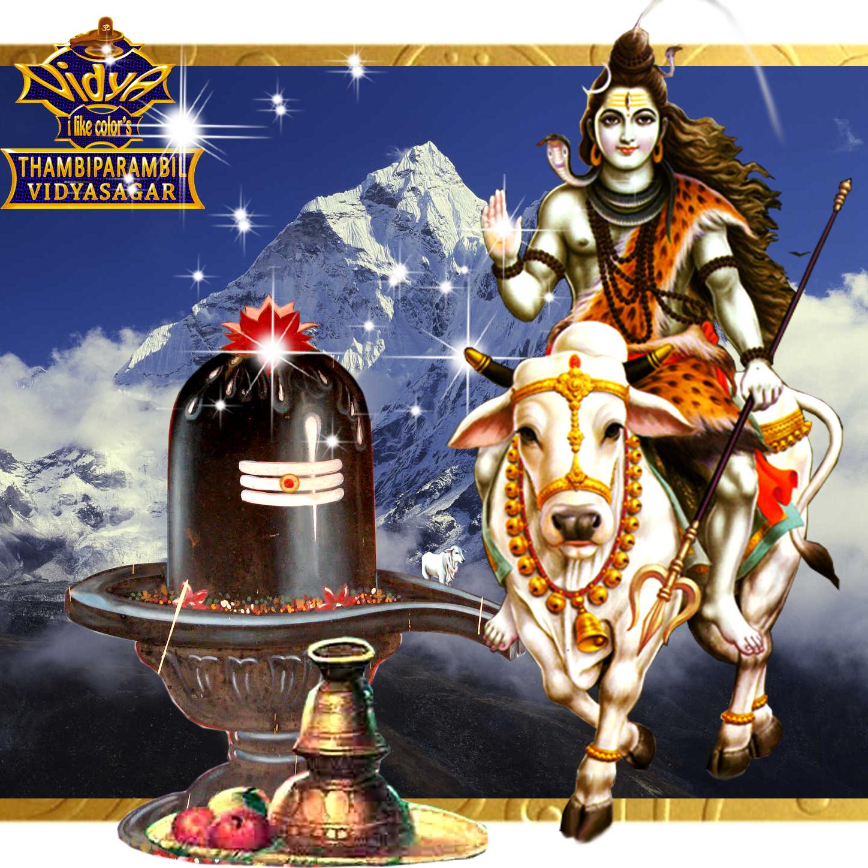 LORD SHIVA WALLPAPER'S: lord shiva wallpaper's