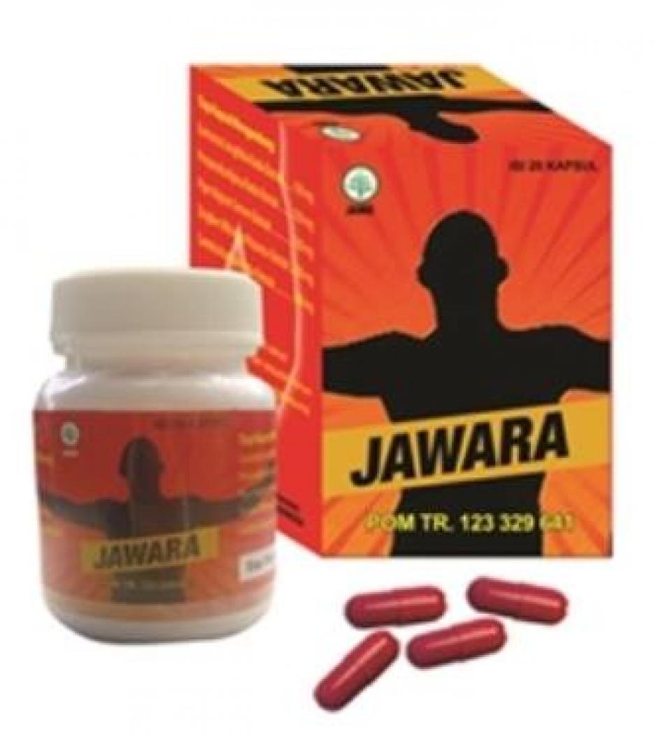 obat kuat alami jawara 0821 3727 4712 mall of herbal 0821