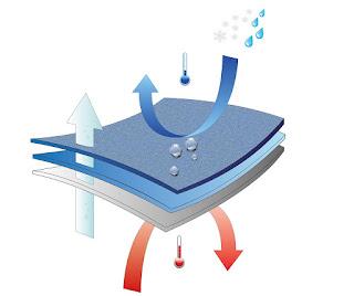 Imagen que muestra el Sistema SoftShell con sus tres capas