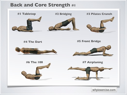 healthy tips for your body: 10 Best Back Exercises for Men