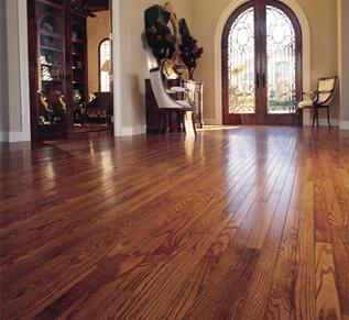 Home Family Desing Bamboo Hardwood Flooring