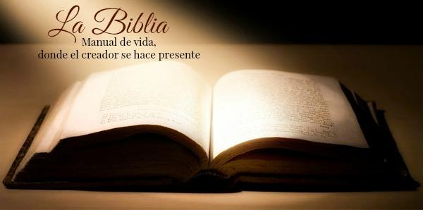 Frase Matrimonio Biblia : Ministerio unidad de la fe estudio bÍblico juan