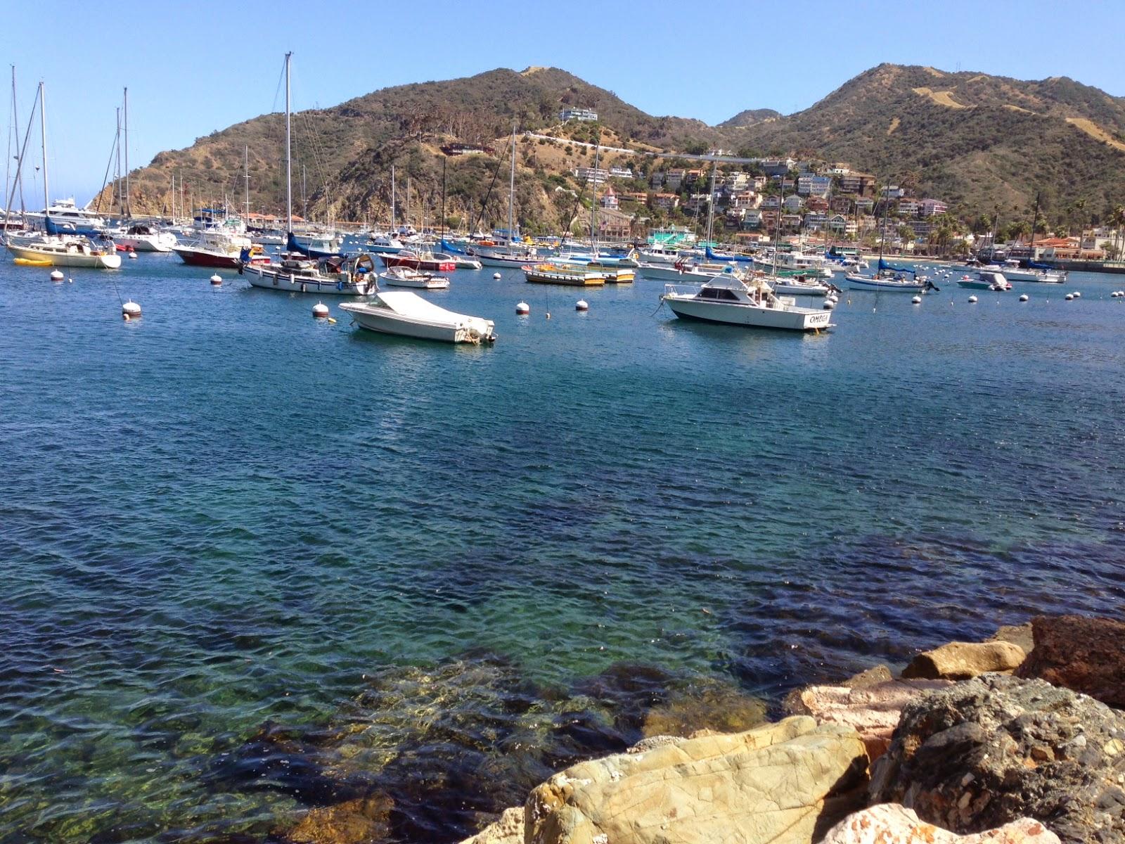 Behgopa Freebies At The Birthday Island Visit Catalina