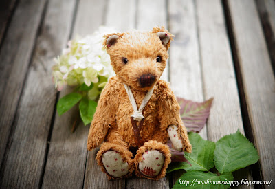 медвежонок, тедди-медвежонок, teddy&friends