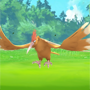 Pokemon GO: Fearow