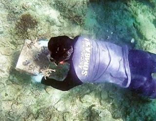 Adventurous Sumbawa Kembalikan Kelestarian Laut