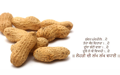 Happy Lohri Messages in Hindi Punjabi