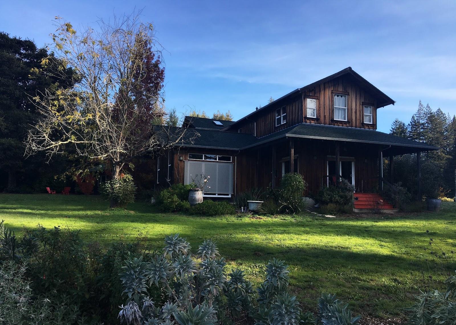 San Francisco Bay Style: Ward Ranch Christmas Tree Farm