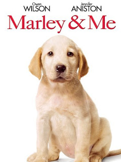 Marley & Me, Cute Puppy Photo