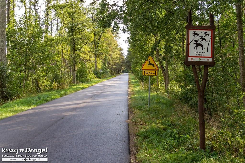 W Biebrzańskim Parku Narodowym