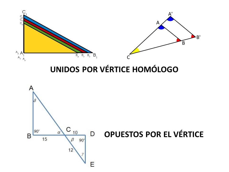 Matemáticas Tercer Grado Secundaria: Contenido 2 ...