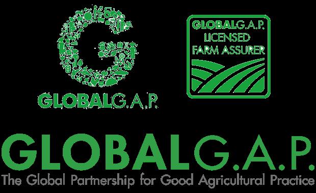Logo tiêu chuẩn Global GAP