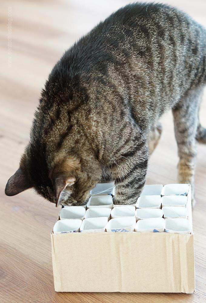 Berühmt aentschies Blog: Katzenspielzeug Fummelkiste DIY XV42