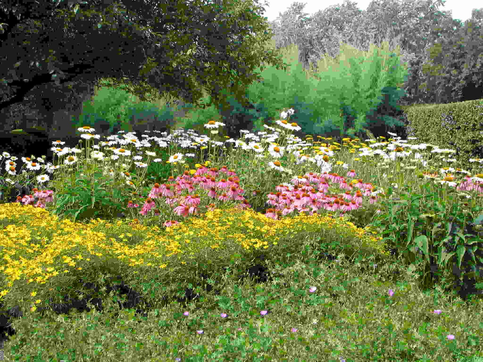 Flowers Garden Ideas: Garden Design: The Best Way To Have The Benefit Of Cottage