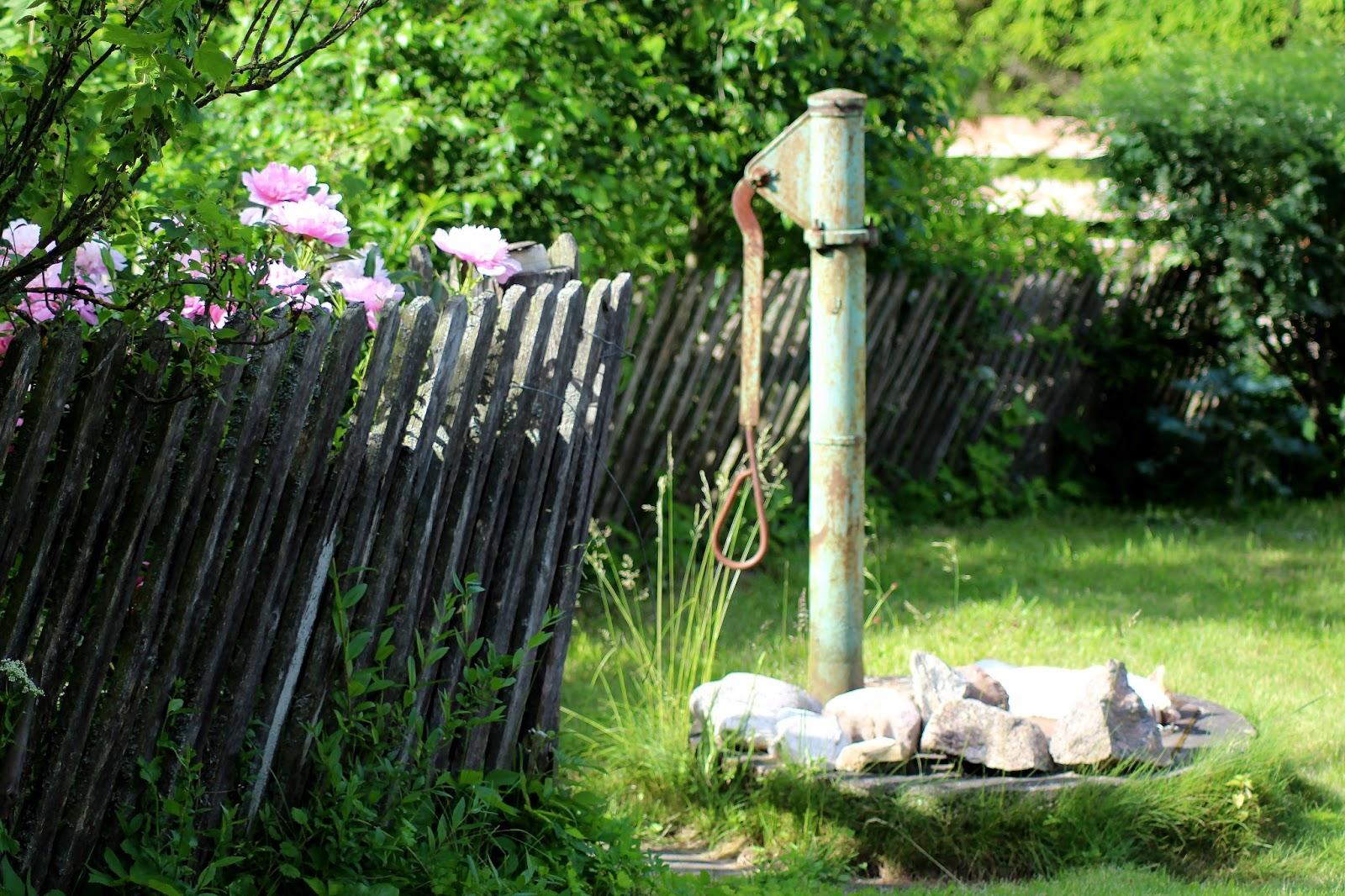 migawki-czerwca