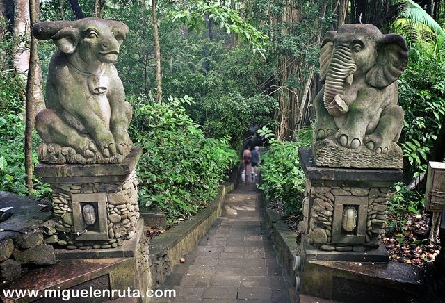 Escalinata-bosque-Ubud