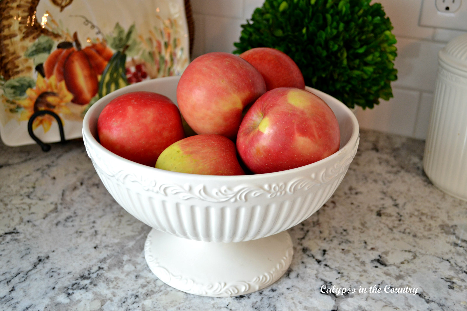 Fruit Bowl filled with red apples