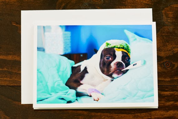https://www.etsy.com/listing/152481503/get-well-soon-card-boston-terrier-sick?ref=favs_view_1