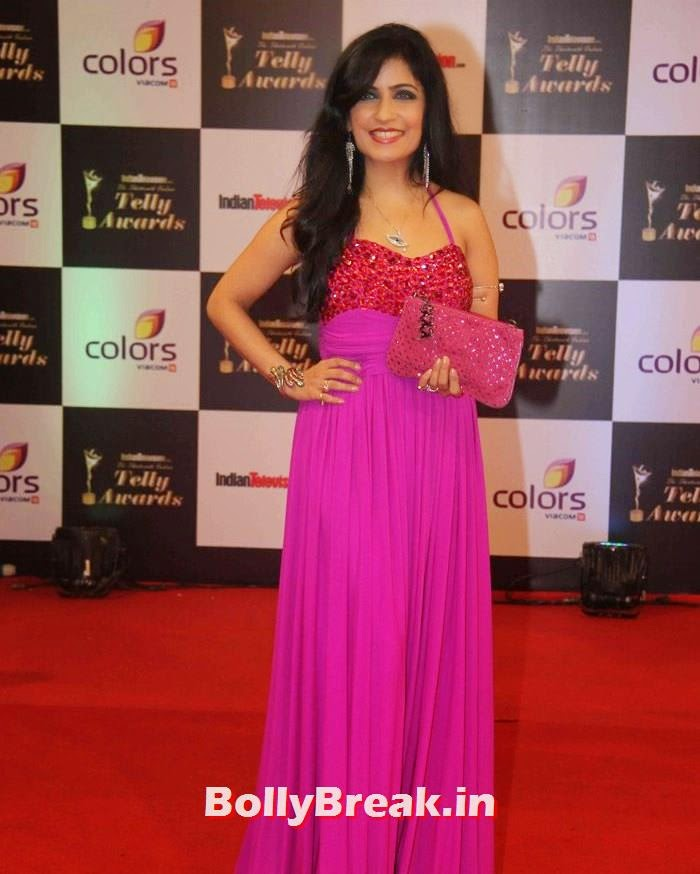 Shibani Kashyap, Pics on Red Carpet of 13th Indian Telly Awards 2014
